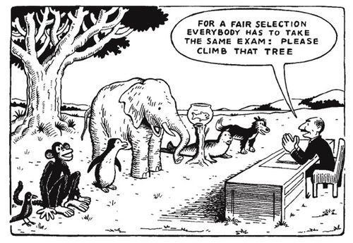 "Comic showing animals that need to take ""climb that tree"" exam"