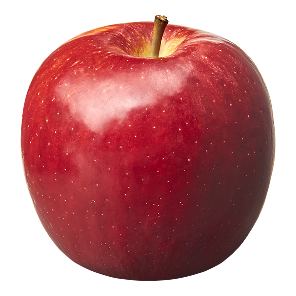 """Apple Picture to go with the line """"Great teachers eat apples."""""""
