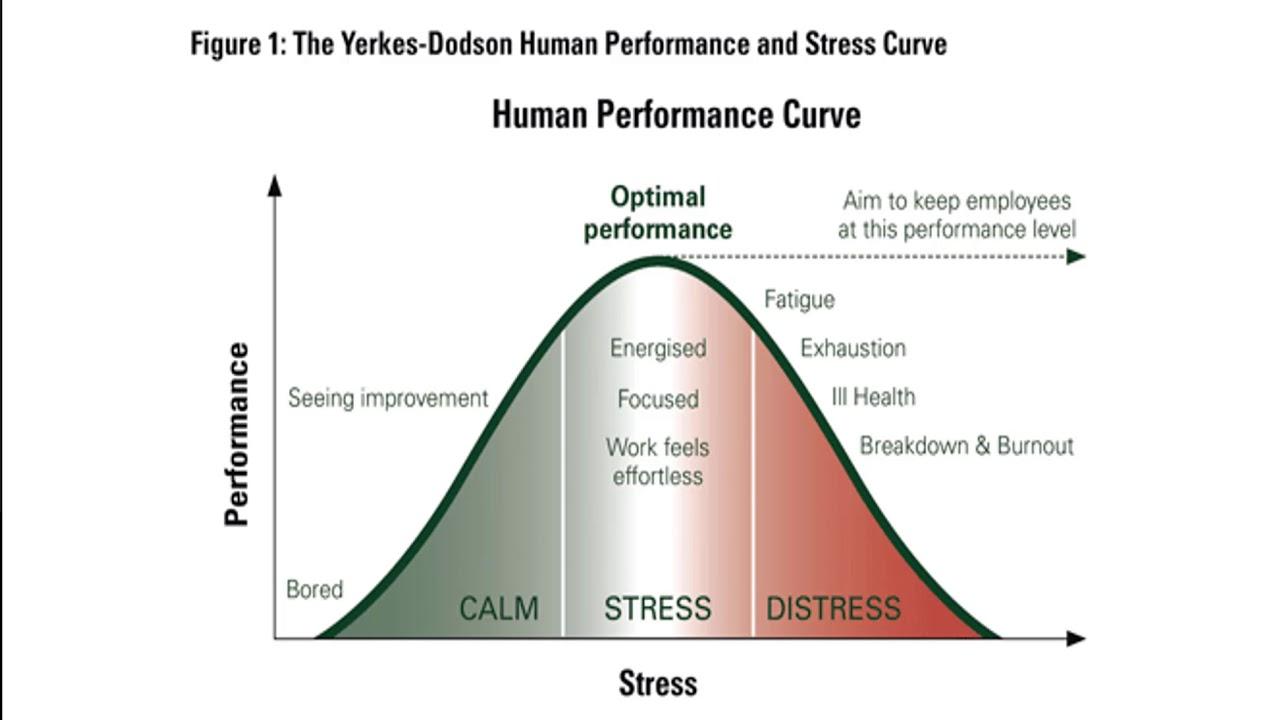 Yerkes-Dodson Human Performance Stress Curve